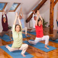 Izvorna joga za vitalnost